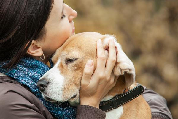Client Care at Animals' End-Of-Life–including how to handle end-of-life discussions.