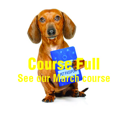 COURSE FULL_2